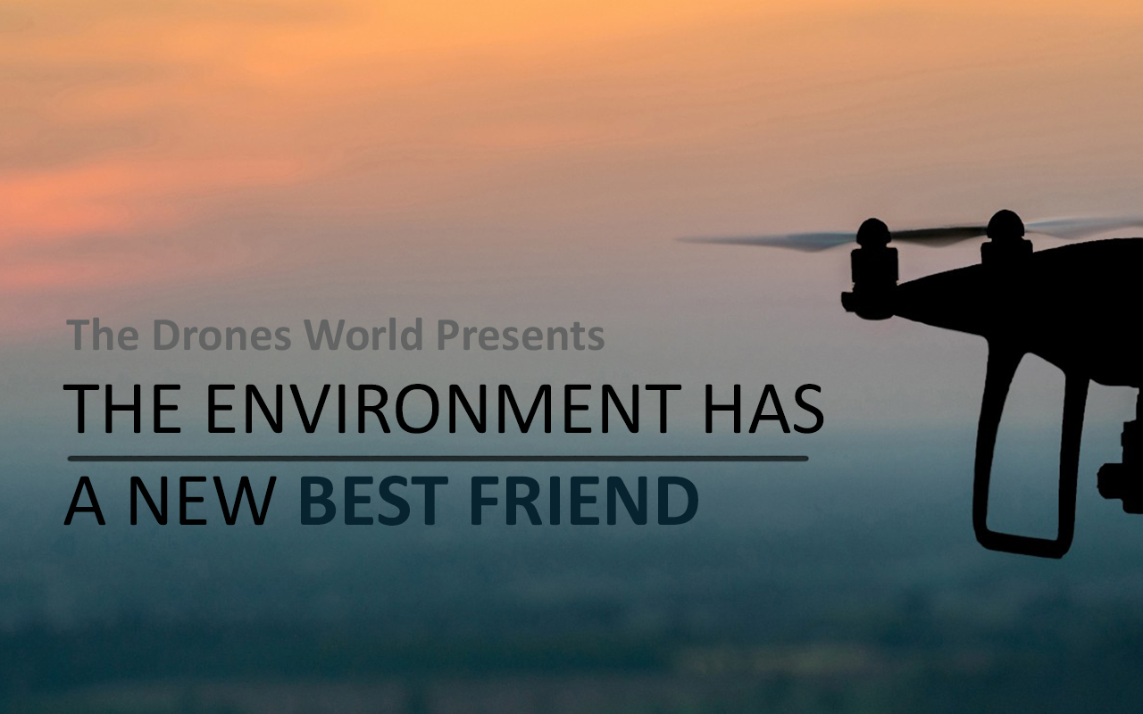 Environment New Best Friend_Cut5